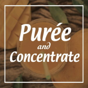 Puree & Concentrates